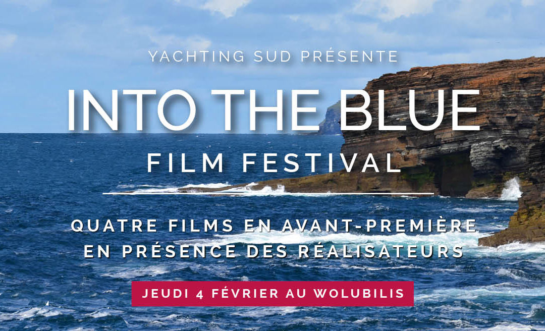 Retour sur la « Sports Fair » et le Festival « Into the blue »