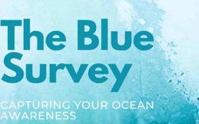 Sondage – capturing your ocean awarness